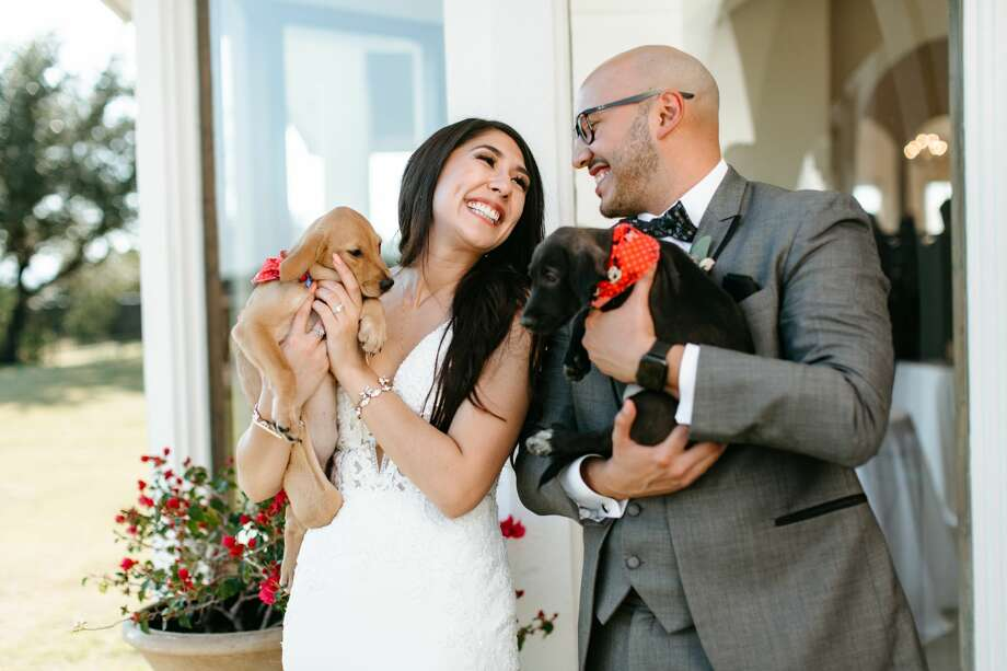 San Antonio couple, Alexis and Eric Castillo, recently partnered with San Antonio Pets Alive! to have a puppy cuddling session at their wedding with the hopes of spreading awareness for pet adoption. Here are photos from their wedding on Saturday, October 19 at The Villa at Cielo Vista on the Northwest Side. Photo: Andrea Cauneac (Andreacauneacphoto)