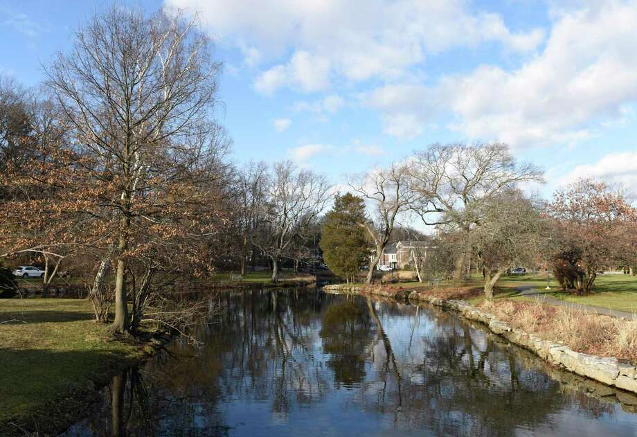 Join the Greenwich Tree Conservancy for a Tree Walk from 2 to 4 p.m. Sunday through beautiful Binney Park in Old Greenwich. The Binney Park Advisory Committee has been working with the town to restore the park to its earlier grandeur. Come see the progress and the plans for the future. Family friendly and open to the public. Meet by the tennis courts. Reserve a spot by emailing: treeconserv@optonline.net. Photo: File / Tyler Sizemore / Hearst Connecticut Media / Greenwich Time