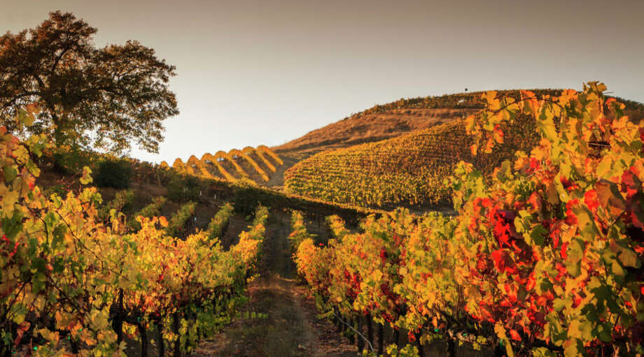 Looking for a late fall wine adventure? Scroll through the slideshow to see where to go. Photo: Timothy S. Allen/Getty Images/iStockphoto