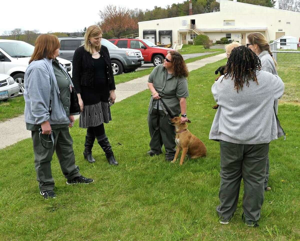 Joan Baranek, right, Kristan Exner, from Tails of Courage, Kerry Seaman, Janis Woods, Margaret Karas and Linda Watkins talk about the two shelter dogs Exner brought to the Federal Correctional Institute, in Danbury. The women are taking part in a new program at the FCI, called Tails of Justice, that matches shelter dogs with inmates who have been certified as handlers. Exner's group Tails of Courage finds the dogs for the program. Thursday, April 28, 2016, in Danbury, Conn.