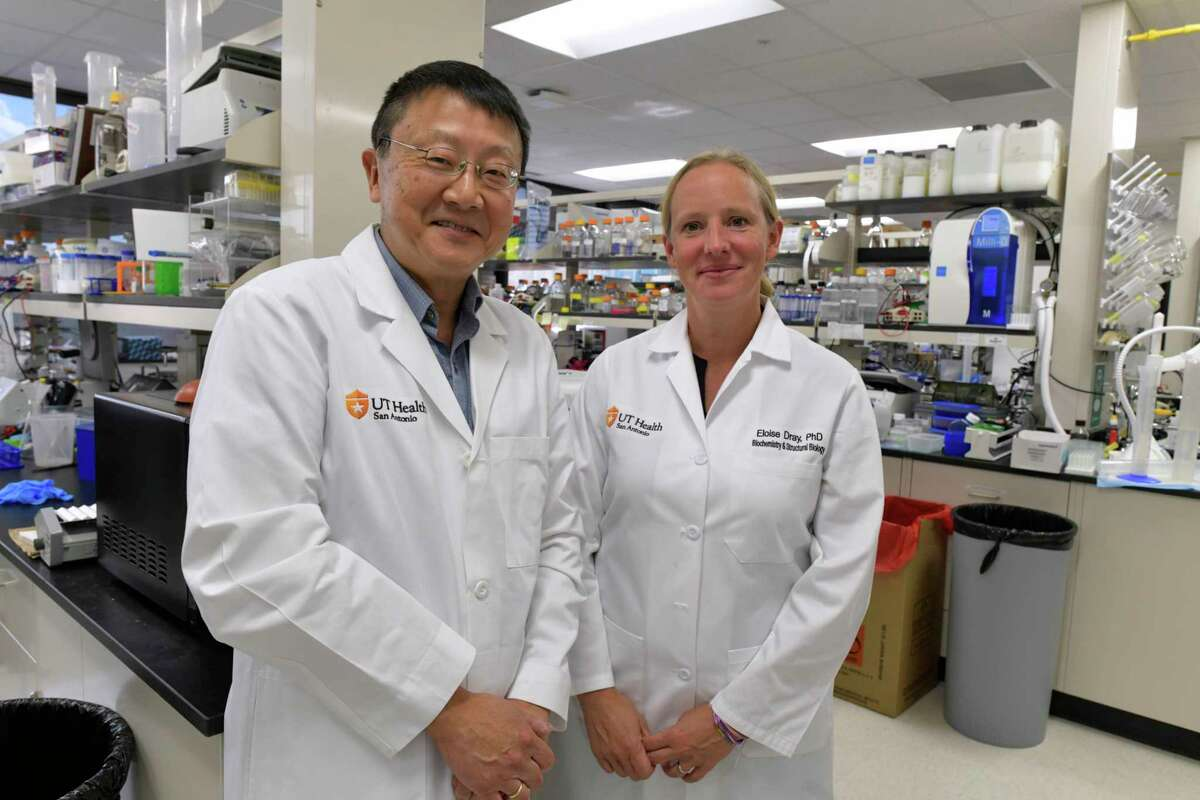 Dr. Patrick Sung, shown with Eloise Dray, Ph.D., is working on a new therapy targeting inherited breast and ovarian cancers. Since he came to UT Health San Antonio on Jan. 1, he's attracted $20.9 million in funding for that research.
