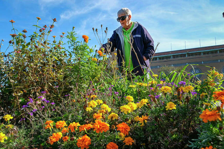 Karen Glynn tends to one of several flower beds in Du Quoin. Glynn has been named an Outstanding Master Gardener. Photo: Byron Hetzler | Southern Illinoisan (AP)
