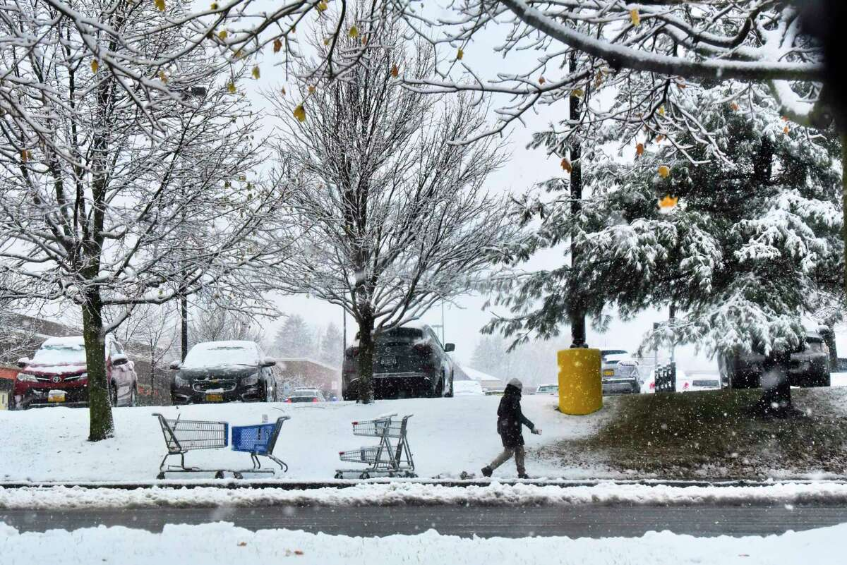 Snow covers the branches of trees on Tuesday, Nov. 19, 2019 in Latham, N.Y. (Paul Buckowski/Times Union)