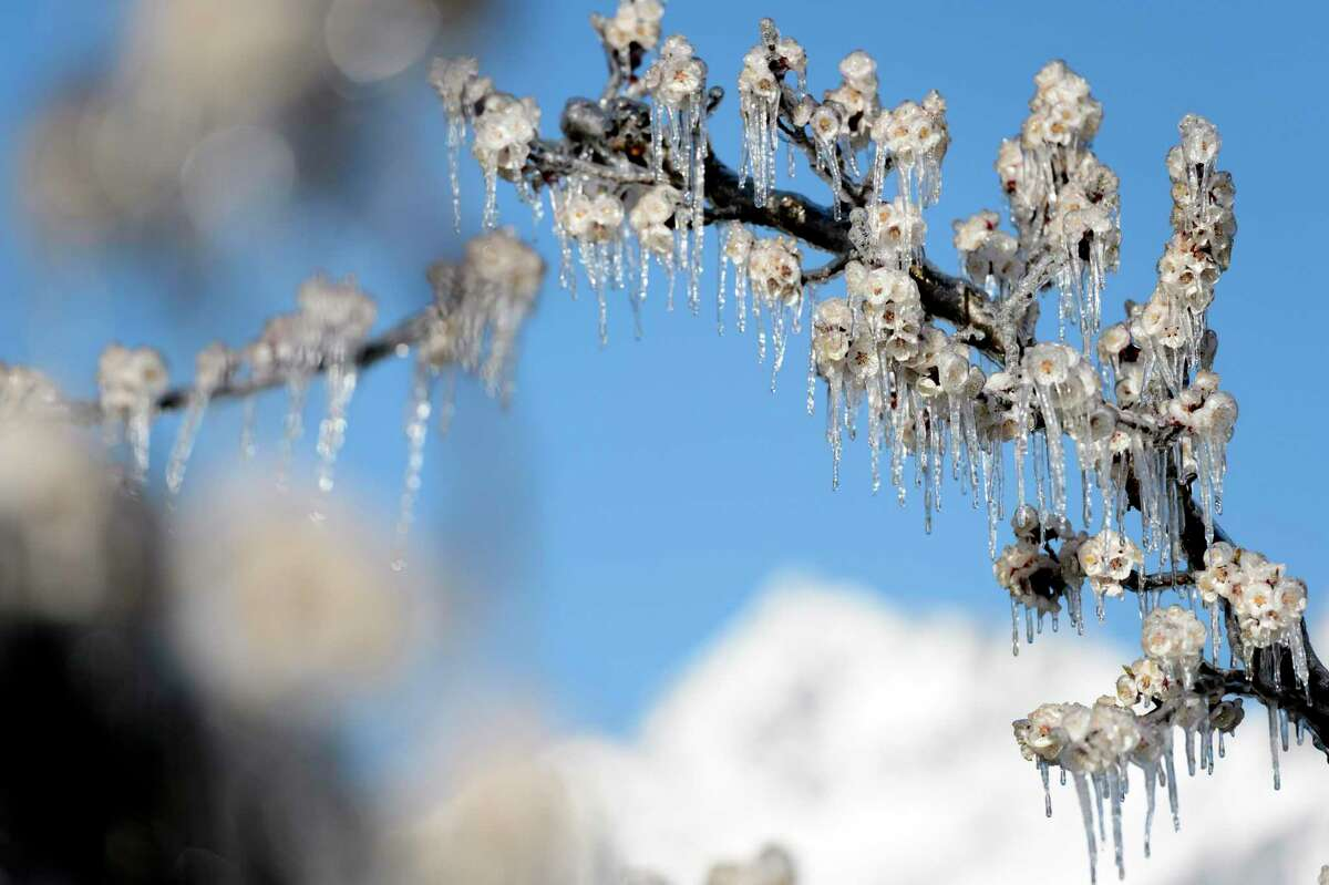 It's time to seriously prepare for the next freeze.