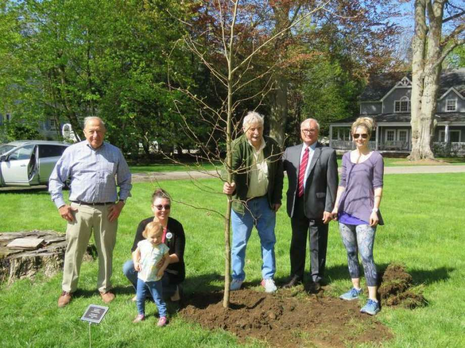 Ben Oko, Kristin Quell-Garguilo and her daughter Celeste, recently-retired Tree Warden John Pinchbeck, First Selectman Rudy Marconi, and Jenny Plassmeier at a tree-dedication ceremony this spring. Photo: Contributed Photo