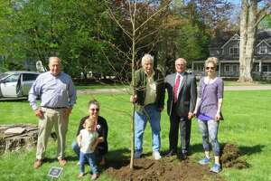 Ben Oko, Kristin Quell-Garguilo and her daughter Celeste, recently-retired Tree Warden John Pinchbeck, First Selectman Rudy Marconi, and Jenny Plassmeier at a tree-dedication ceremony this spring.