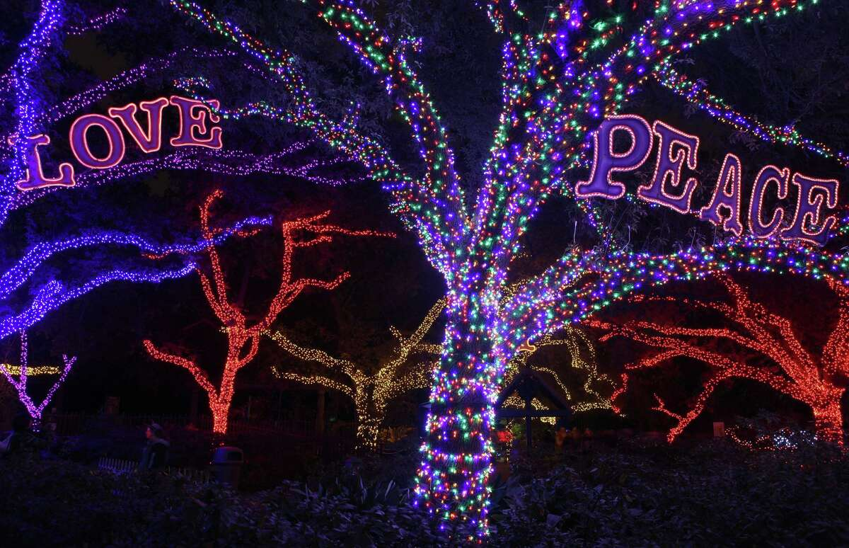 Spectators walk through glowing oak trees sparkling with thousands of colorful LED lights at Zoo Lights.