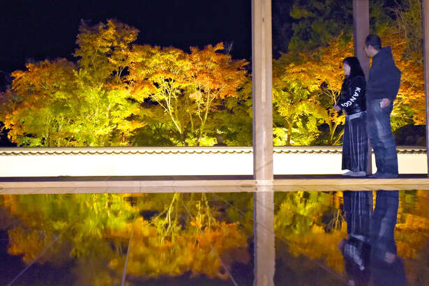 """Maple trees at Hotokuji temple in Kiryu, Japan, are illuminated and the reflection of their beautifully colored leaves appears on the glossy floor of the main hall. The lacquered wood floor at the shrine features a 28-tatami-mat space that serves as a mirror, on which vivid colors of the red and yellow maple leaves appear conspicuously in the dark. """"The scene provides a different way to savor the autumn leaves than when they are viewed under a blue sky,"""" the temple's chief priest said. The illumination runs through Nov. 28."""