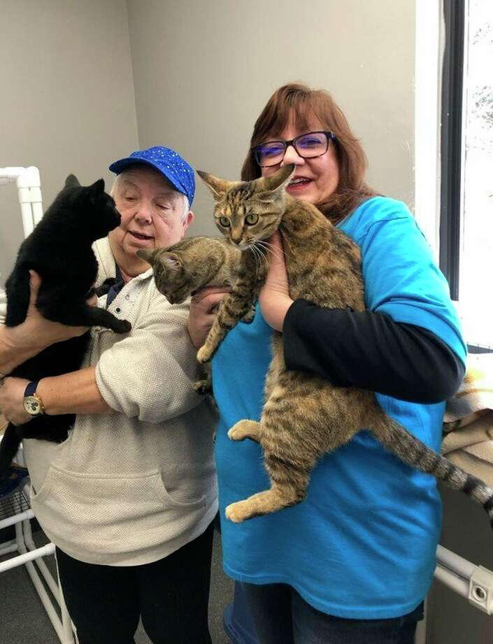 Animal Welfare League of Benzie County volunteer Pat Kinske, left, and president Doreen Carter, hold cats available for adoption at the Benzie County Animal Shelter. About 15 cats and 6 dogs are currently awaiting their forever homes at the shelter. (Courtesy Photo)