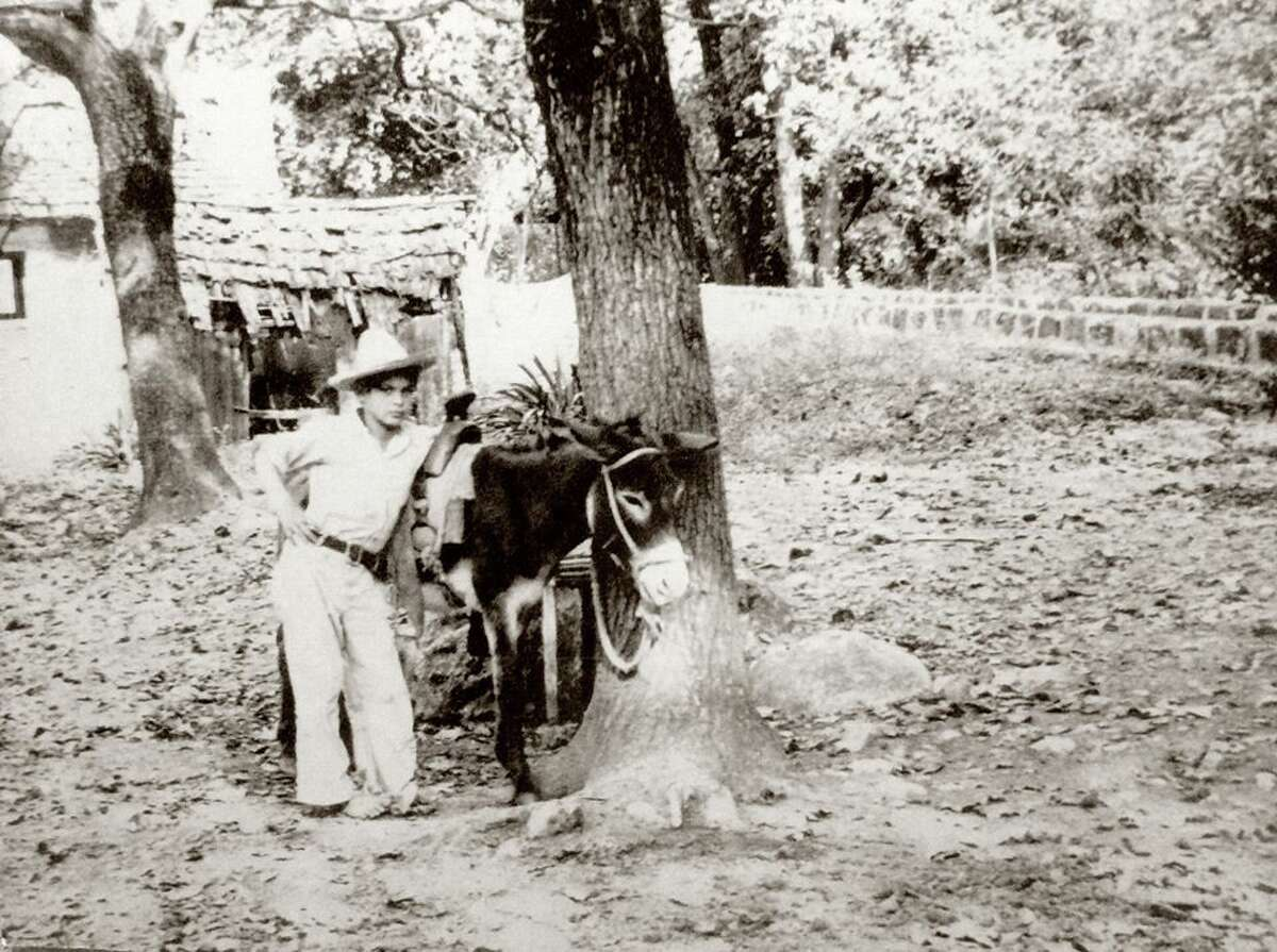 TOT: Traces of Texas reader Alva Rahe kindly shared this spectacular photo of a boy and his burro, probably in San Antonio. This photo was found in an attic in the Alamo City with no notation or signage; we're left to speculate on the kid's life and his identity. I love the jaunty, slightly defiant pose. The fact that he's barefoot, with the burro ... too much!