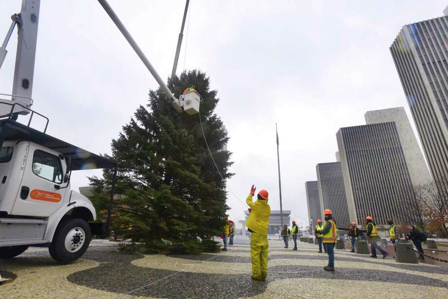 New York State Office of General Services employees work on erecting the holiday tree at the Empire State Plaza on Wednesday, Nov. 20, 2019, in Albany, N.Y.   (Paul Buckowski/Times Union) Photo: Paul Buckowski, Albany Times Union / (Paul Buckowski/Times Union)