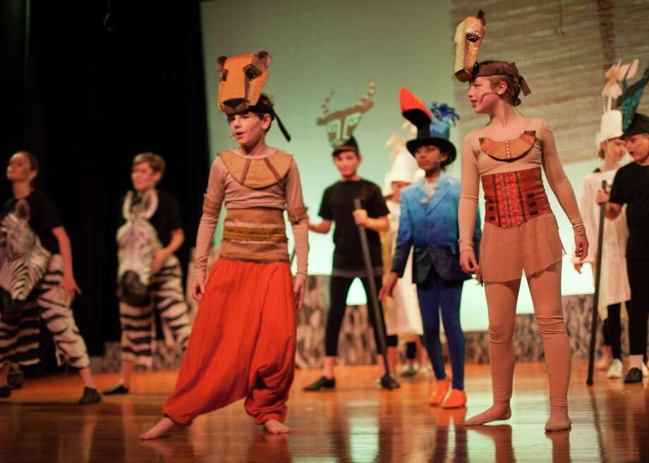The Wilton Children's Theater will present Disney's The Lion King Jr. Nov. 22-24 at Middlebrook School in Wilton. Photo: Contributed Photo / Wilton Children's Theater / Wilton Bulletin Contributed