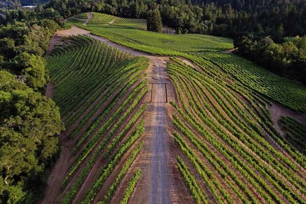 Newton's steep vineyards on Spring Mountain in the Napa Valley make exceptional wine.