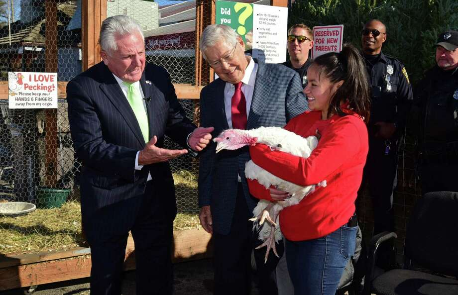 Norwalk Mayor Harry Rilling joins Stew Leonard Sr. to pardon Sonnie the turkey with the help of employee Evelin Jaimes as Stew Leonard's Turkey Brigade hands out Thanksgiving turkeys to residents in need, soup kitchen reps, homeless shelters and other charities via human assembly line Thursday, November 21, 2019, at the store in Norwalk, Conn. Over 3,000 turkeys were distributed as part of the 4oth annual event. Photo: Erik Trautmann / Hearst Connecticut Media / Norwalk Hour