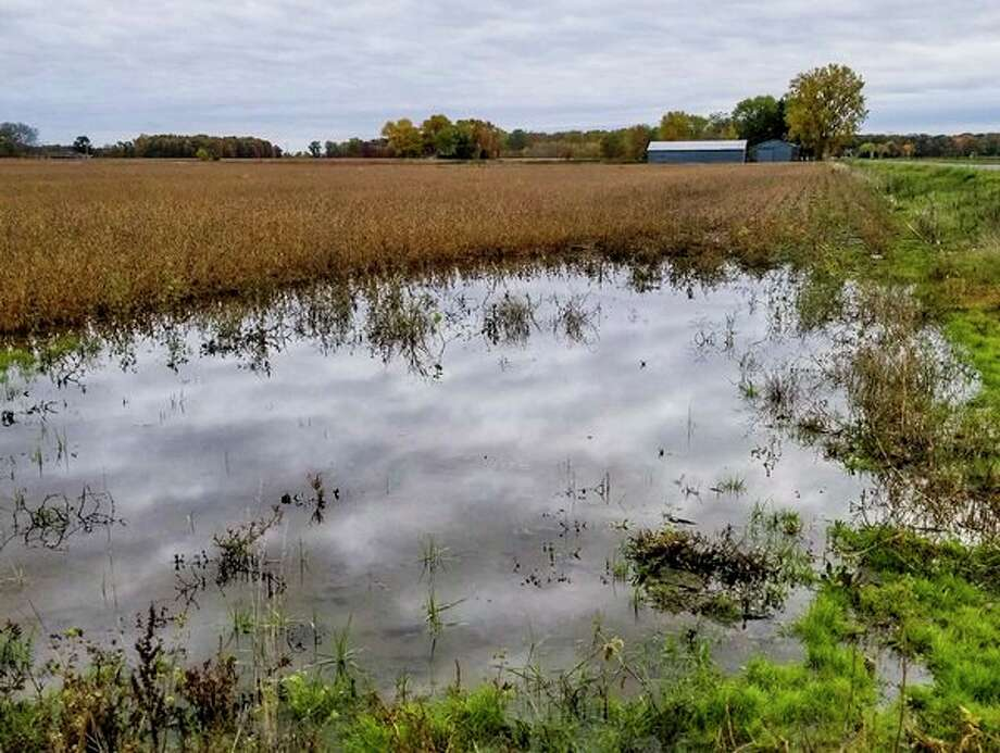 Rainwater covers a field on a farm owned by Sarah and Zack Zastrow. (Photo provided/Sarah Zastrow)