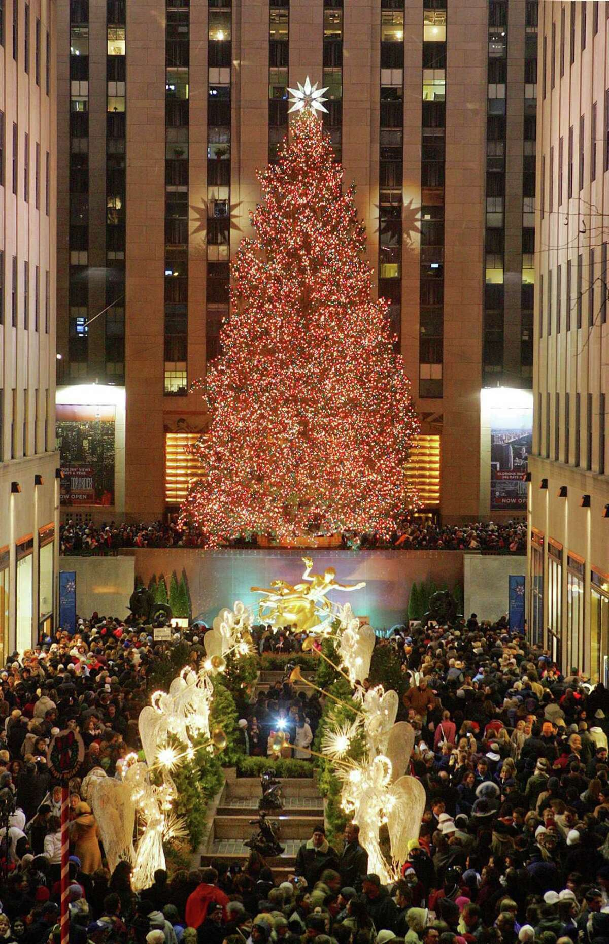 The Rockefeller Plaza is crowded with people looking at the Christmas tree in New York December 3, 2005. The 74 feet (22.55 m) tall Norway spruce from Wayne, N.J. weighs nine tons (8,165 kg), is lit with 30,000 lights and is topped with a Swarovski star. REUTERS/Dima Gavrysh