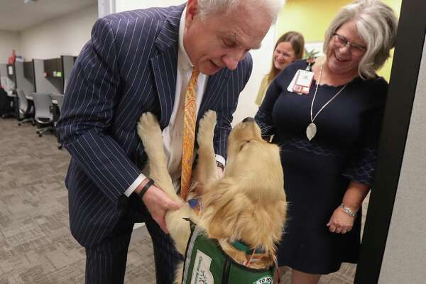 Mark Wallace, CEO of Texas Children's Hospital greets Bailey, a therapy dog, Friday, Nov. 22, 2019, in Houston.