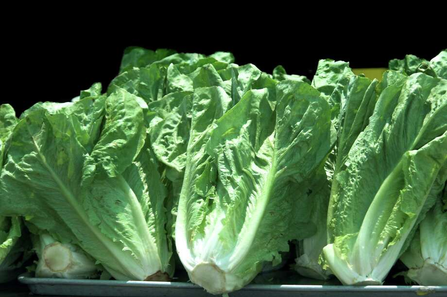 Federal health officials are advising consumers to throw away romaine lettuce and salad mixes from California's Salinas Valley amid a nationwide outbreak of E. coli infections linked to the area. Photo: Dreamstime / Dreamstime