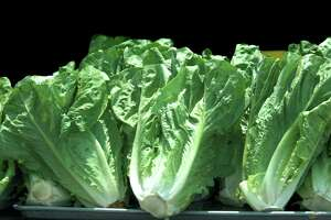 Federal health officials are advising consumers to throw away romaine lettuce and salad mixes from California's Salinas Valley amid a nationwide outbreak of E. coli infections linked to the area.