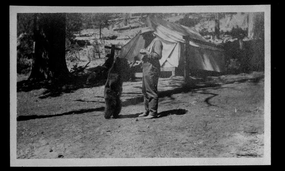 """An early park visitor unwisely feeds a begging bear. How times change!"" the Yosemite Facebook page wrote in the caption to this recently donated photo. This is definitely not something rangers would recommend visitors do today. Photo: Herbert Asa Sawin / Yosemite National Park Archives"