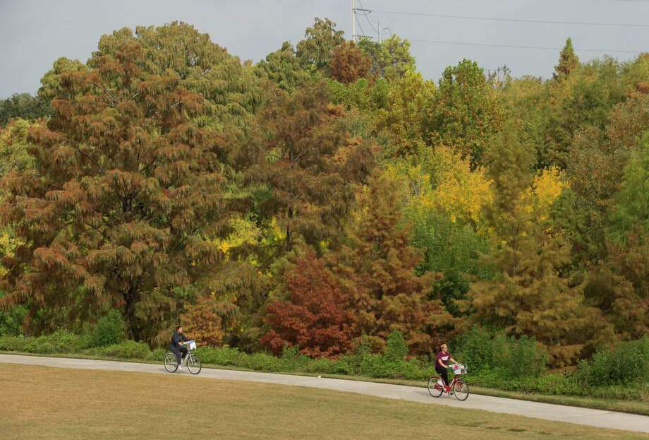 Two cyclists bike past colorful trees on the Buffalo Bayou trails on Friday, Nov. 22, 2019, in Houston. Photo: Yi-Chin Lee, Houston Chronicle / Staff Photographer / © 2019 Houston Chronicle