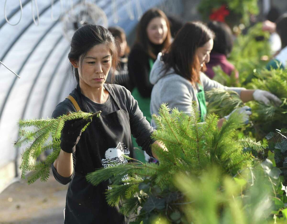 Eriko Sayers assembles a festive holiday basket at Sam Bridge Nursery in Greenwich, Conn. Thursday, Nov. 21, 2019. More than 50 volunteers from the Greenwich Japanese School and Greenwich High School worked with Greenwich Greenwich and Clean to assemble 116 festive holiday arrangements.