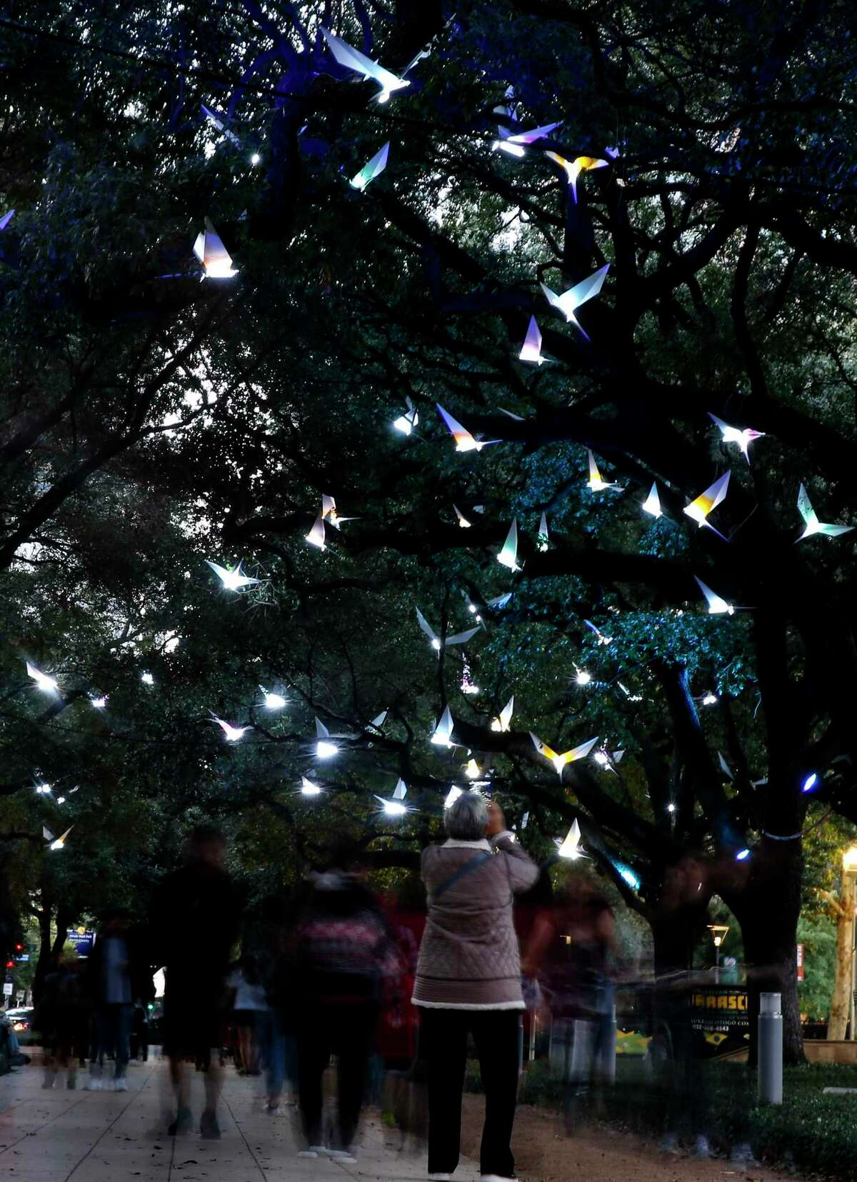 """People walk under Discovery Green's holiday exhibit """"Paloma"""" a sound and light exhibit along the Oak Allee on Sunday, Nov. 24, 2019 in Houston. This year's holiday installation combines a soundtrack by Houston artist Lina Dibb that incorporates the calls of migratory birds with the French collective Pitaya's 200 lighted, origami-like, white steel bird forms that appear to be flying through the tree canopy."""
