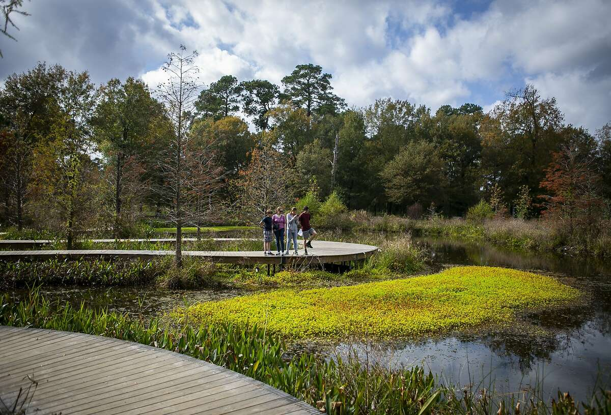 Angela Maloney stops to look at a group of turtles with her three children, Morgan, 15, Nathaniel, 13, and Matthew, 9, from a boardwalk trail at the Houston Arboretum.