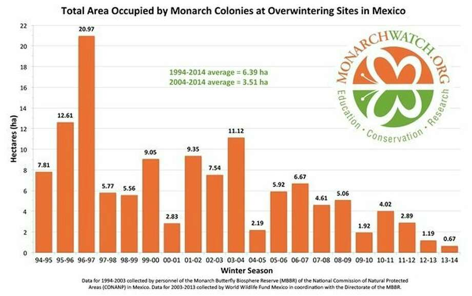 The monarch butterflyhas declined 80 percent in its overwintering grounds in Mexico over the past 20 years. (Courtesy graphic/Monarch Watch)