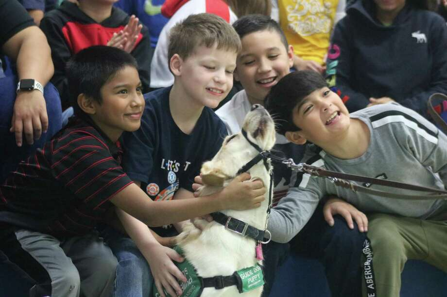 A host of elementary school students give a guide-dog puppy plenty of attention during the Sam Rayburn-Brazoswood contest last Thursday morning. Photo: Robert Avery