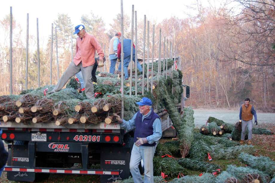 The Exchange Club of New Canaan is kicking off its annual Christmas Tree sale at Kiwanis Park Friday, Nov. 29. This year marks the club's 52nd year running the annual event, which raises funds for a variety of charitable organizations in New Canaan and nearby communities. Photo: Contributed Photo / Exchange Club Of New Canaan