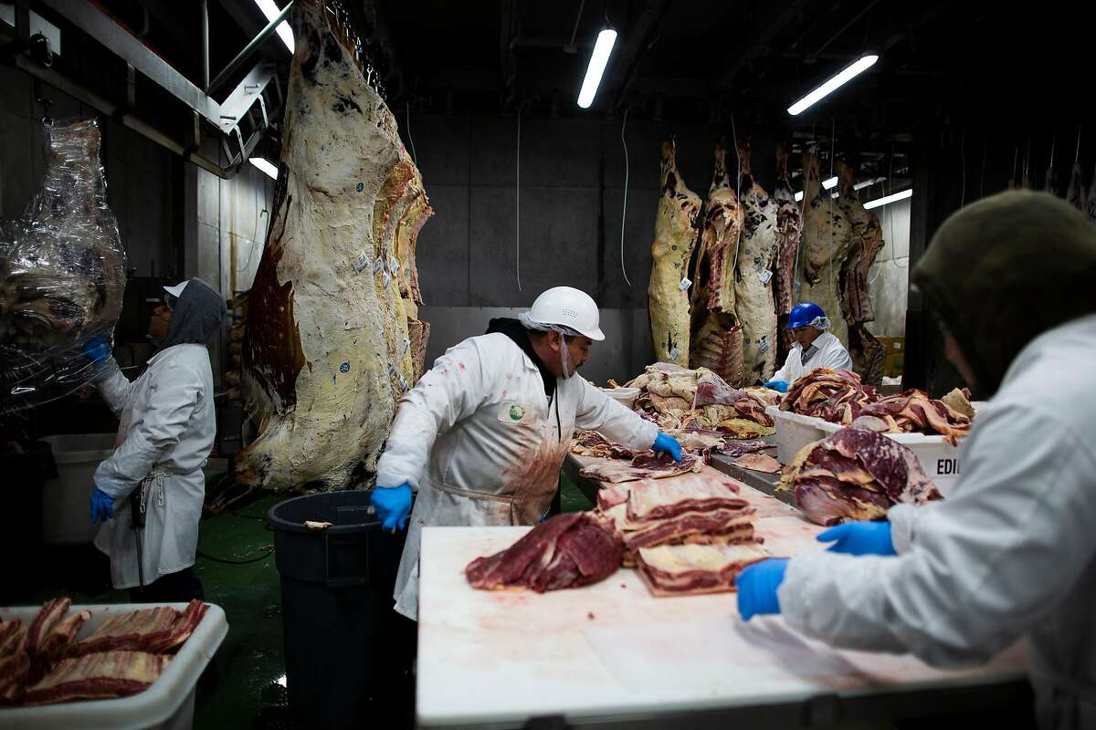 Workers processing beef at Marin Sun Farms, the Bay Area�s last remaining USDA-certified slaughterhouse, Petaluma, California, November 26th, 2019. In January, the Bay Area�s last remaining USDA-certified slaughterhouse, run by Marin Sun Farms in Petaluma, will no longer process animals from local ranches other than its own. When the local meat ranching company took over the slaughterhouse in 2014 that had been owned by Rancho Feeding Corp., it promised to help other ranches stay in business by offering the service. The company announced last month that it would no longer offer the service due to lack of management staff to oversee the program and other issues including the liability of having to handle meat from so many different companies and deal with USDA inspectors. The move leaves many Sonoma and Marin county ranchers without a place to process their animals.