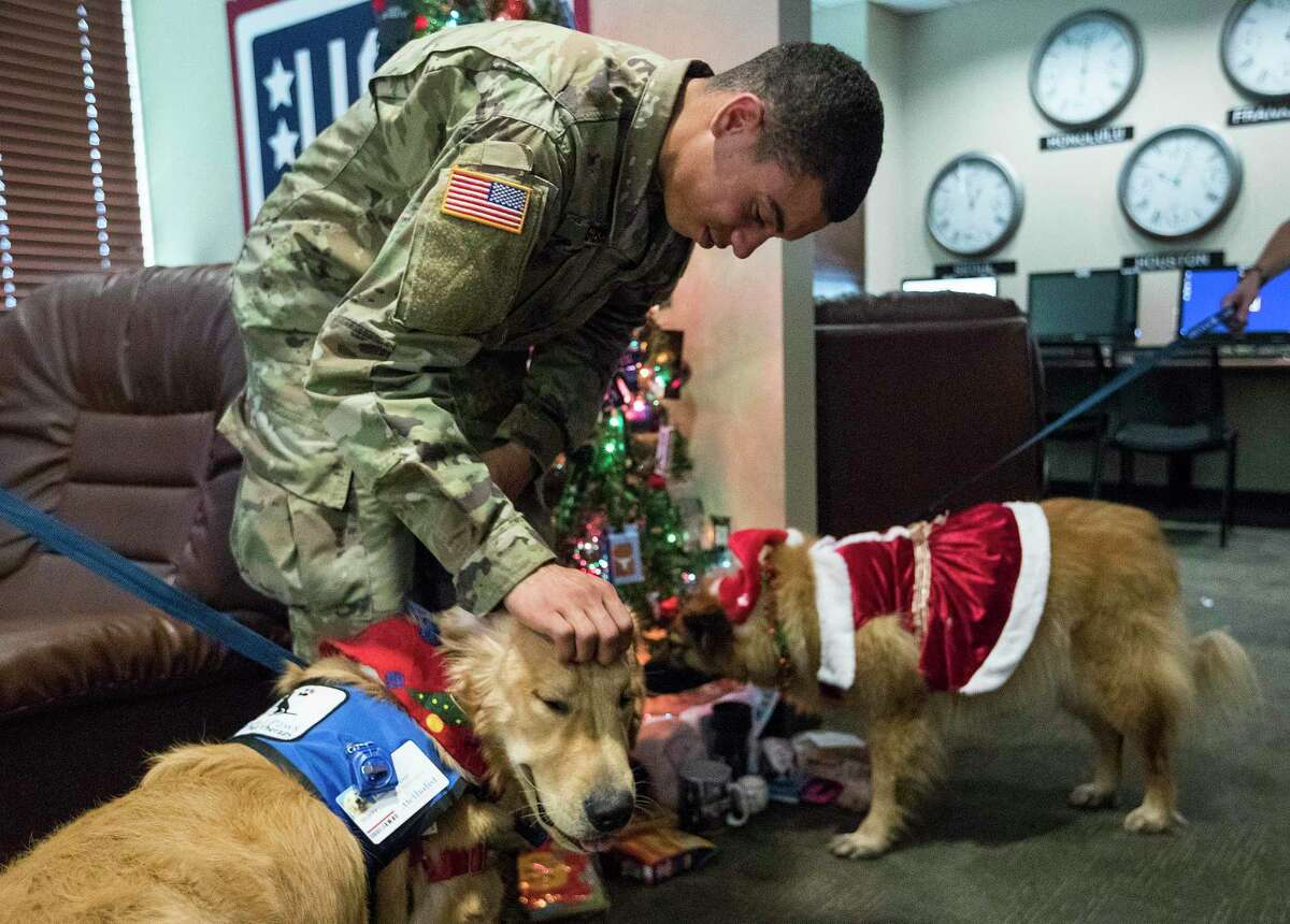 Army Pvt. Damien Gibbs, of Hanford, Calif., receives a visit in the USO office from Sharky and Kira, two of several comfort dogs brought to George Bush Intercontinental Airport, to help relieve some of the stress of travel during the holidays on Friday, Dec. 21, 2018, in Houston. For the fourth year, United Airlines brought travelers a bit of comfort and joy during the busy holiday travel time with comfort dogs for passengers to pet and enjoy while making their way through the terminal at IAH.