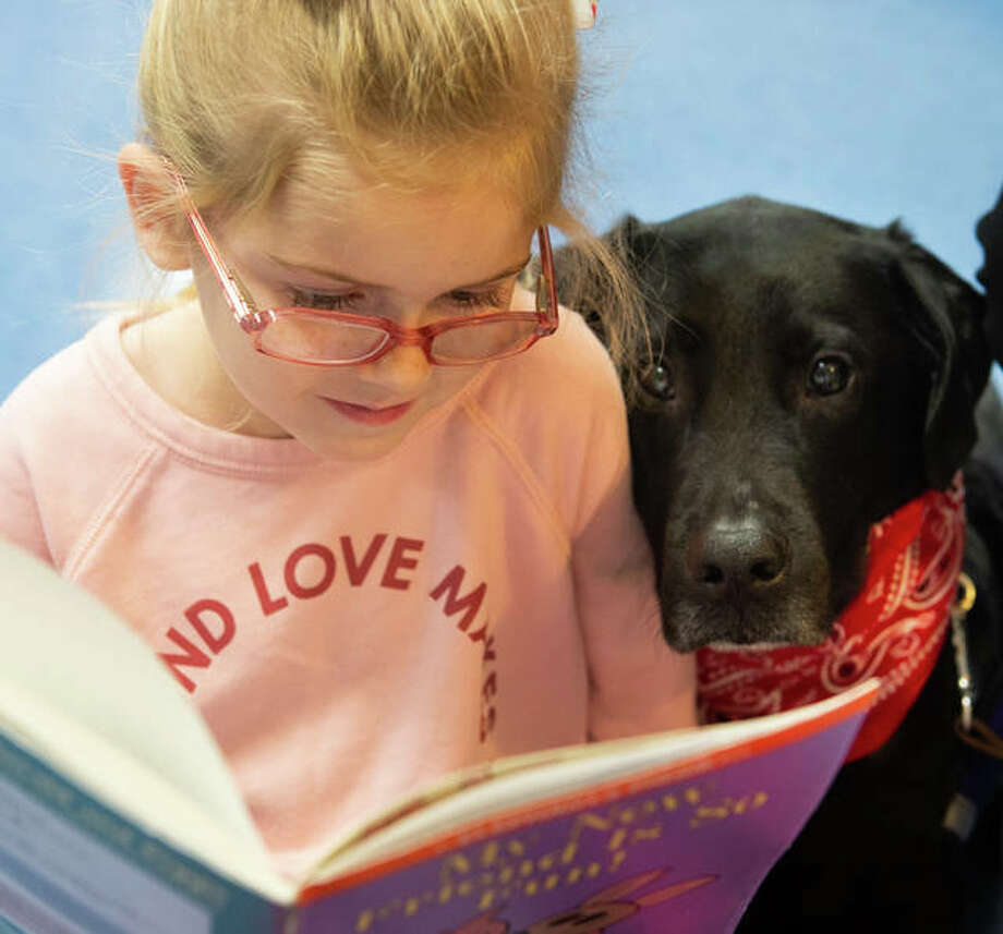 "Maryville first-grader Laceigh Raulerson reads ""My New Friend Is So Fun"" by Mo Willems to her paw pal on Nov. 26. The school is using visits by therapy dogs to help the students learn how to read. Photo: For The Intelligencer"