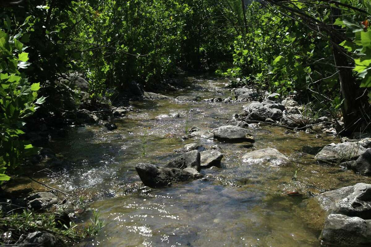 A tributary to Blanco creek flows through foliage on the Marneldo Ranch near Sabinal. The ranch is a conservation easement through the Edwards Aquifer Protection Program.