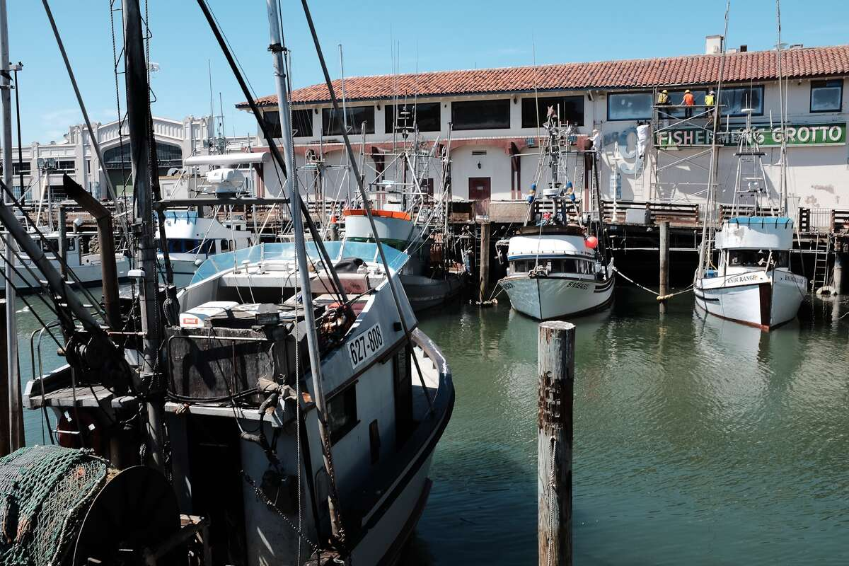 You can still find real fishermen at Fisherman's Wharf. Here are a few of their boats docked in the Fisherman's Grotto. Check out other things you can see and do at the Wharf in the slideshow.
