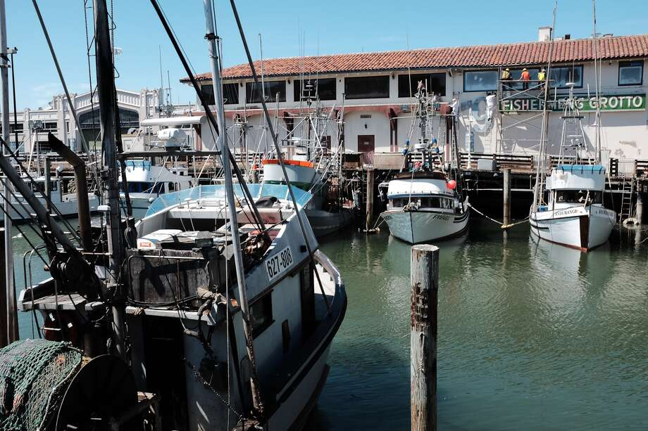 You can still find real fishermen at Fisherman's Wharf. Here are a few of their boats docked in the Fisherman's Grotto. Check out other things you can see and do at the Wharf in the slideshow. Photo: Mike Moffitt/SFGATE