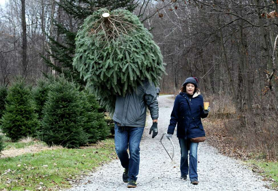 Jeff Kehoe od Schenectady, left, carries out his Christmas tree with Jamie King, right, after cutting it down in the tree fields at Ellms Family Farm on Friday, Nov. 29, 2019, in Ballston Spa, N.Y. (Will Waldron/Times Union)