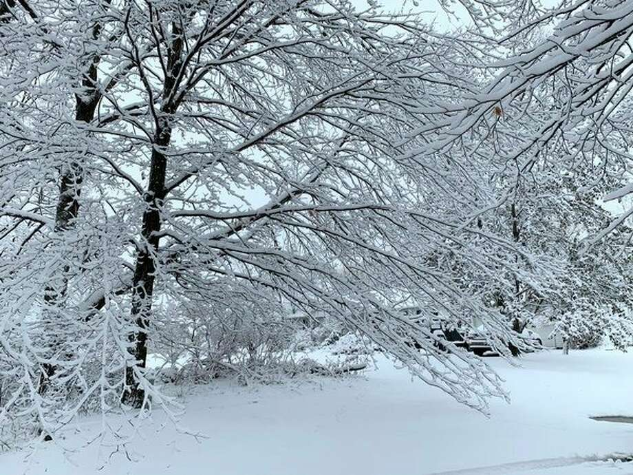 Snow blanketed the area on Sunday morning. The combination of snow and ice accumulation caused power outages throughout the area that lasted through the day Sunday. (Pioneer photo/Cathie Crew)