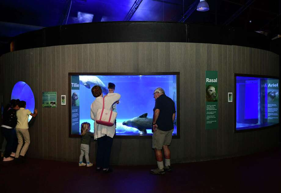 The Maritime Aquarium announced they're closing March 13, 2020 through March 29, 2020 to prevent the further spread of coronavirus. Photo: Erik Trautmann / Hearst Connecticut Media / Norwalk Hour