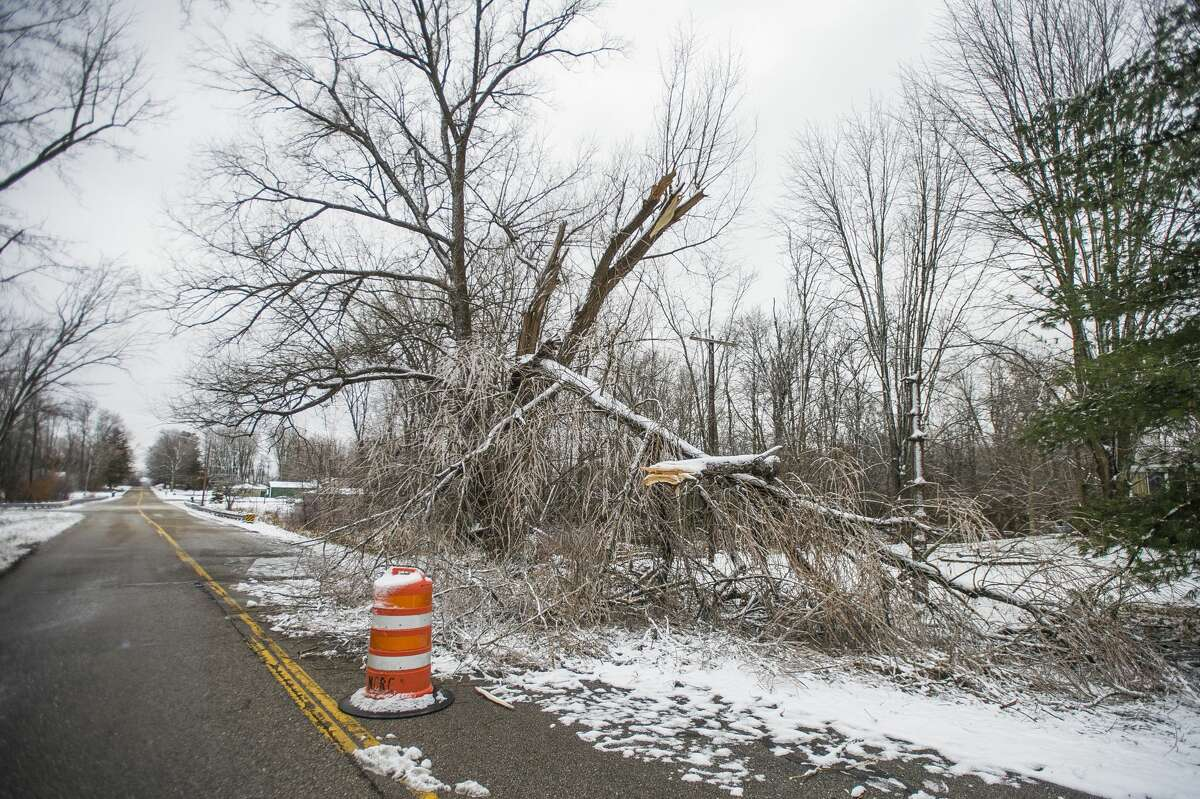 A downed tree covers one lane of Patterson Road between Miller and Ashby Monday, Dec. 2, 2019 in Midland Township. (Katy Kildee/kkildee@mdn.net)