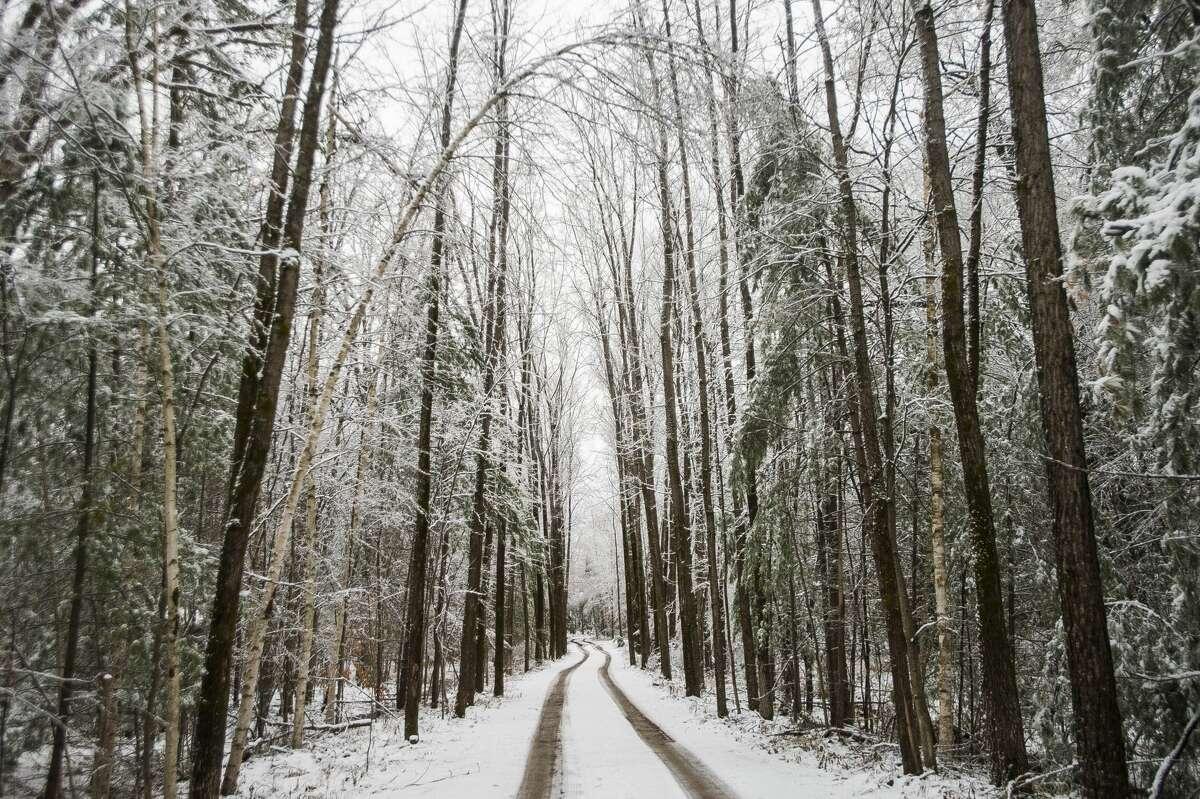 Ice and snow cover surfaces across Midland County Monday, Dec. 2, 2019. (Katy Kildee/kkildee@mdn.net)
