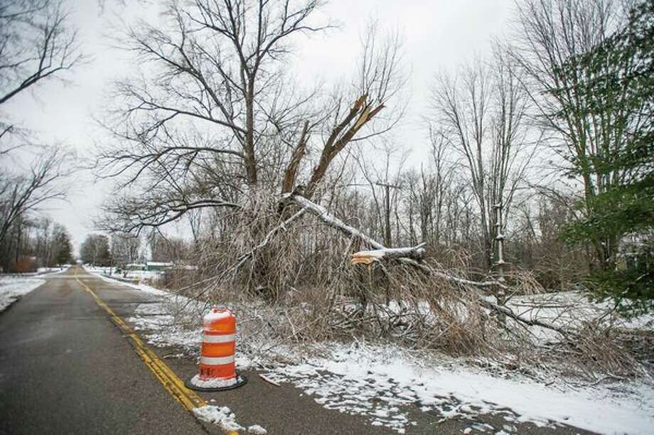 A downed tree covers one lane of Patterson Road between Miller and Ashby Monday in Midland Township. (Katy Kildee/kkildee@mdn.net)