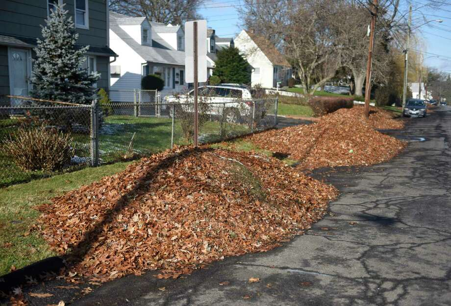 Leaves pile into the street in front of multiple residences on Dora Street in Stamford, Conn. Tuesday, Dec. 3, 2019. Neighbors are trying to get the city to clean up all the illegal dumping on their streets, but the city says it has to stop cleanup this time of year because crews are collecting leaves and plowing and sanding the streets. Photo: Tyler Sizemore, Hearst Connecticut Media / Greenwich Time