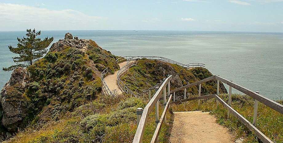 The Muir Beach Overlook provides a spectacular lookout along the Marin Coast and out to sea. Photo: Ann Joyce / National Park Service