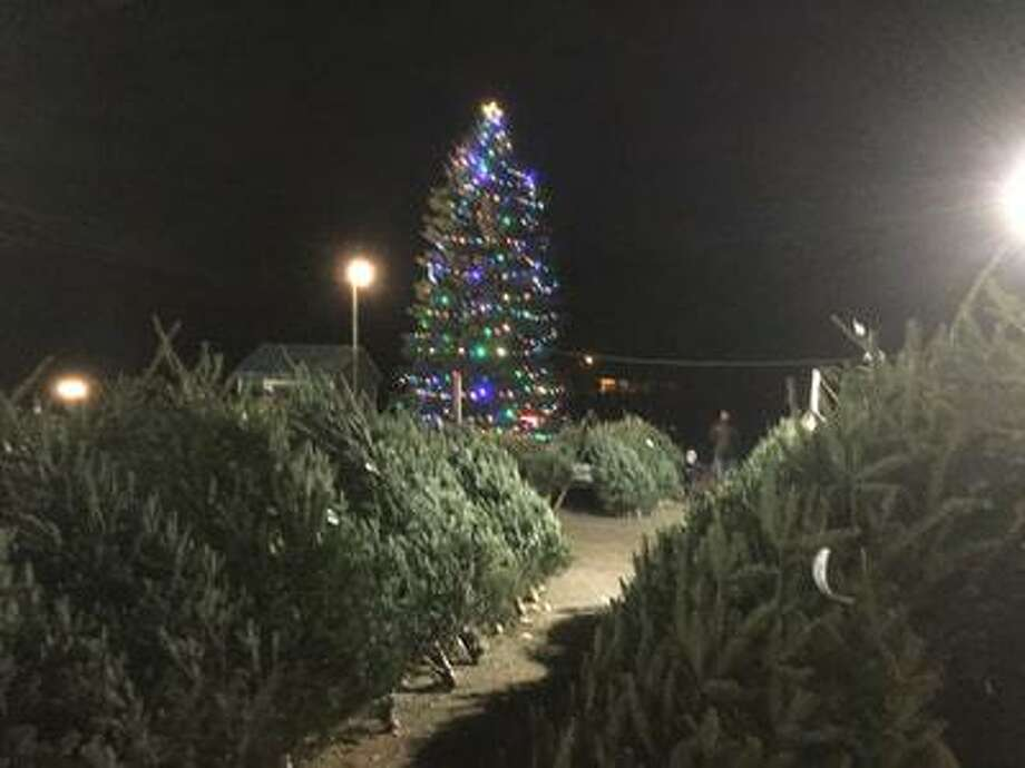 The Exchange Club of New Canaan hosted its annual Christmas Tree Lighting at Kiwanis Park Saturday, Dec. 7, at 5 p.m., after the Holiday Stroll. Photo: Contributed Photo