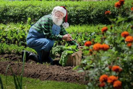 If the person on your Christmas gift list is a gardener, it is relatively easy to select a gift for them.