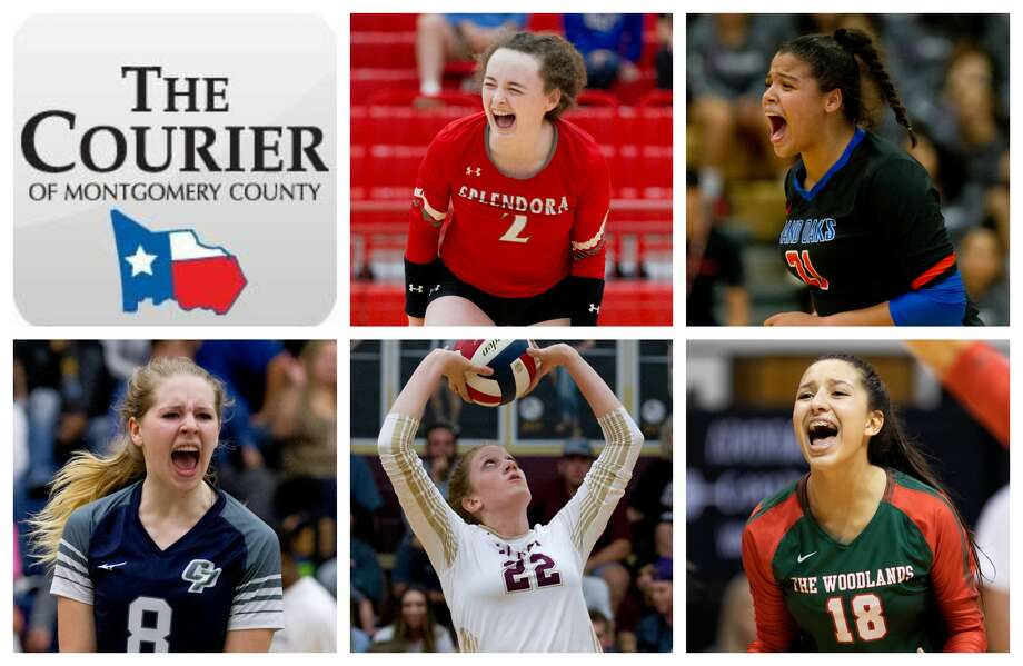 Splendora's Falon Buford, Grand Oaks' Fallon Thompson, College Park's Mallory Madison, Magnolia West's Evyn Snook and The Woodlands' Julieta Valdes are The Courier's nominees for Newcomer of the Year. Photo: Staff Photos