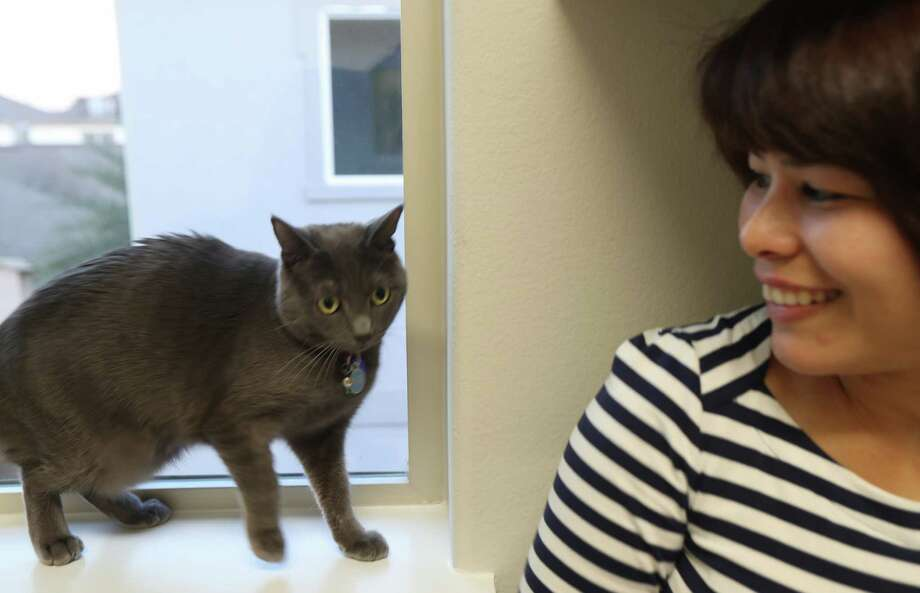 """""""Purrla"""" aids her owners Jennifer Avendano, in finding the perfect home Tuesday, Dec. 3, 2019, in Houston. Photo: Steve Gonzales, Staff Photographer / © 2019 Houston Chronicle"""