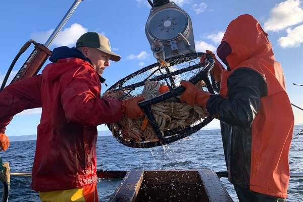 Deckhand Tommy hoists the crab pot full of Dungeness crabs on a crab combo fishing trip out of Emervyille into the Gulf of the Farallones
